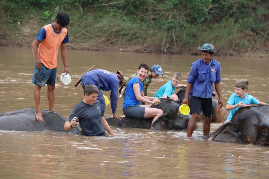 Bathing elephants as part of our mahout training at the Elephant Village in Laos