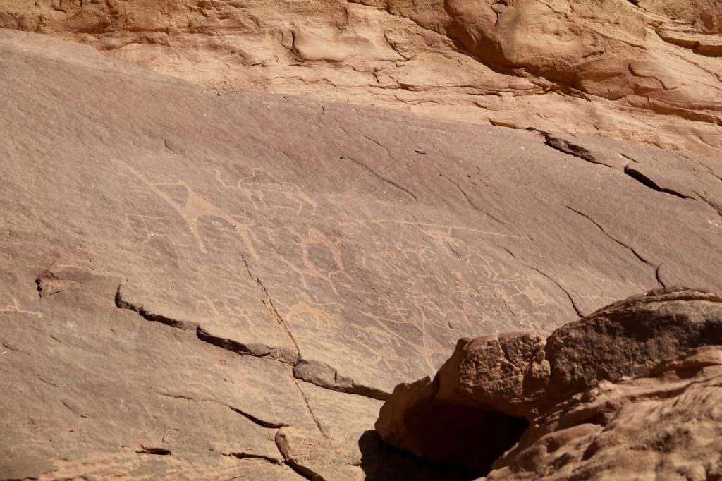 Inscriptions and carvings in Wadi Rum