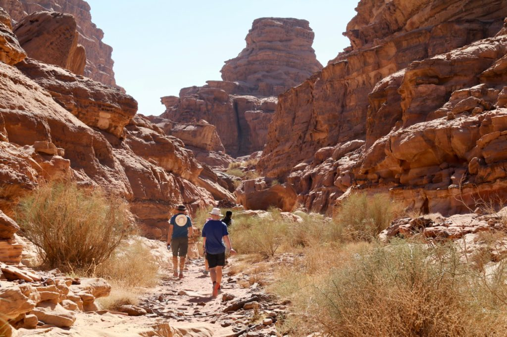 Hiking in Wadi Rum with kids