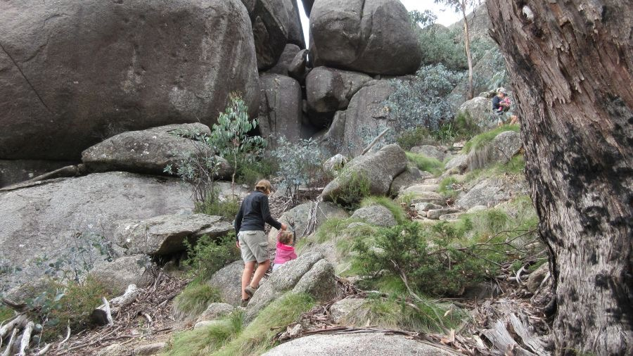 Hiking in Mt. Buffalo National Park with kids - Hill Tribe Travels