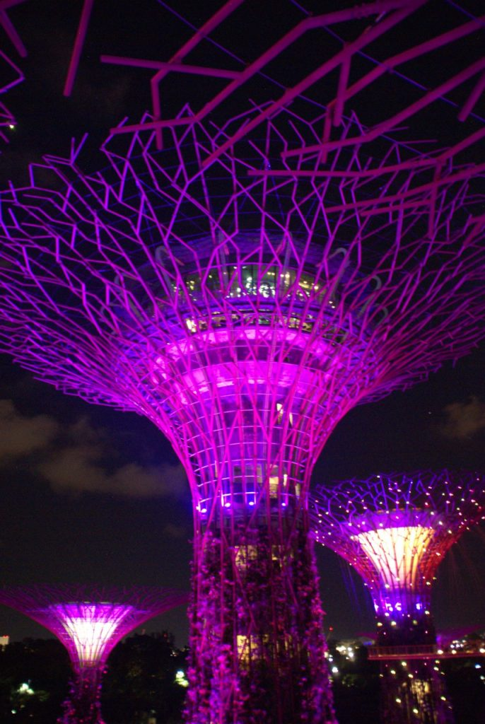 A Short Stay in Singapore | Go Live Young